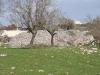 Cont.da-San-Giacomo