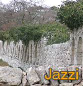 Jazzi